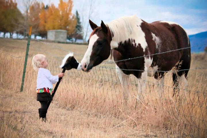 child-and-horse