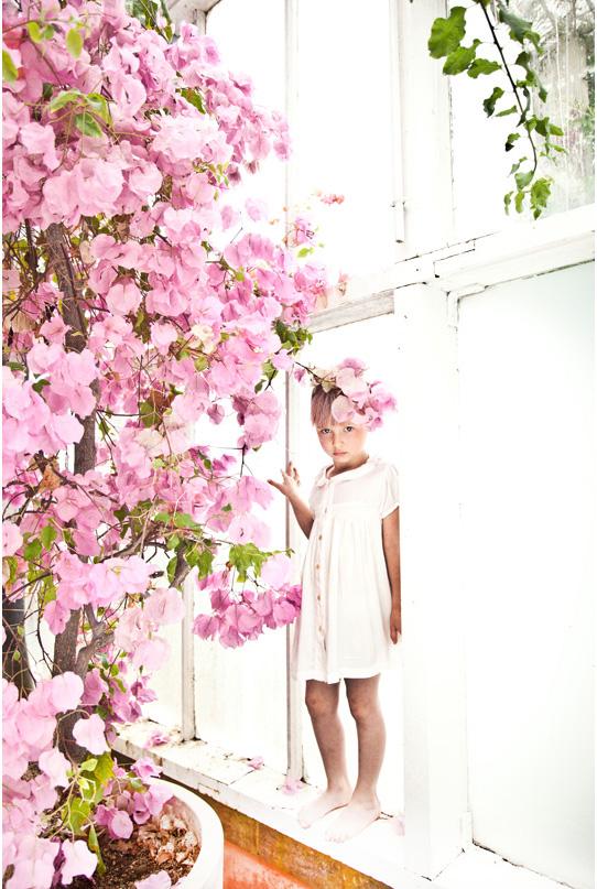 kwiaty-265-IMG_4080